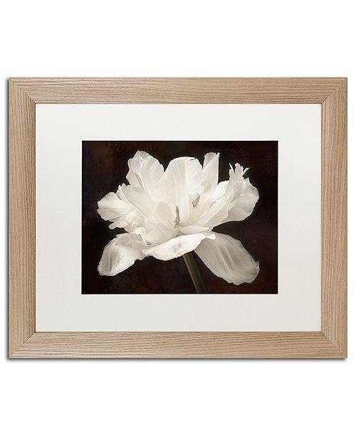 "Trademark Global Cora Niele 'White Tulip I' Matted Framed Art, 16"" x 20"""