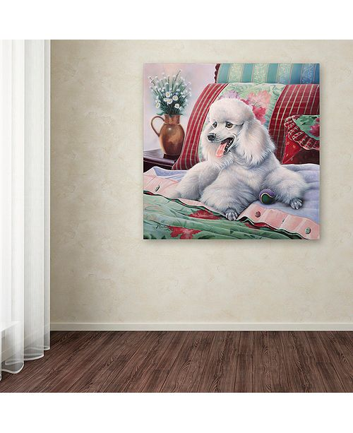 "Trademark Global Jenny Newland 'White Poodle' Canvas Art, 35"" x 35"""