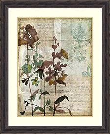 Amanti Art Music Box Floral I Framed Art Print