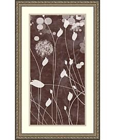 Amanti Art Botany Expressions Vii  Framed Art Print