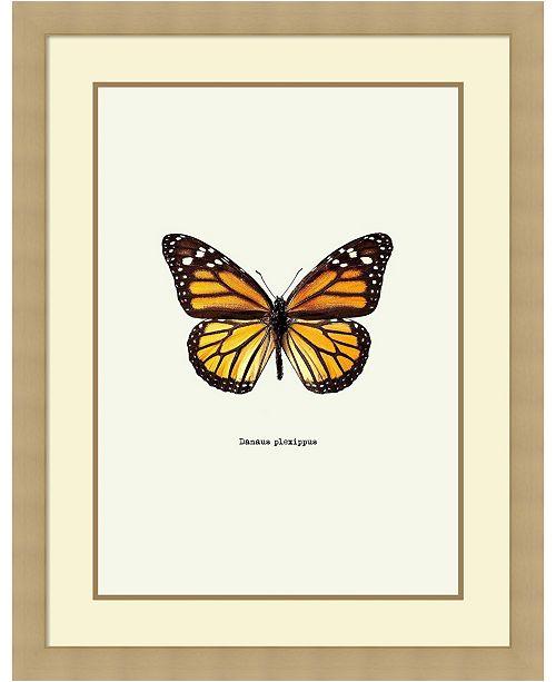 Amanti Art Yellow Butterfly Framed Art Print - Home - Macy\'s