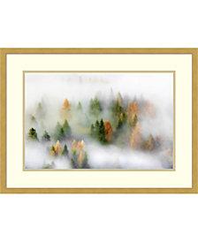 Amanti Art Autumn Dream Framed Art Print