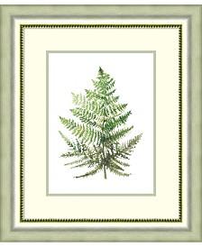 Amanti Art Wild Greens I Framed Art Print
