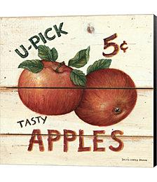 U-Pick Apples by David Carter Brown Canvas Art