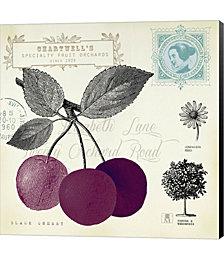 Cherry Notes by Studio Mousseau Canvas Art