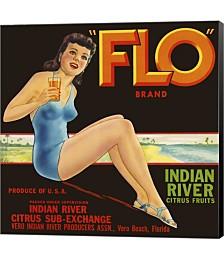 "FLO"""" Brand Citrus by Print Collection Canvas Art"