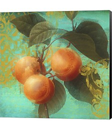 Glowing Fruits II by Color Bakery Canvas Art