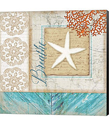 Coastal Starfish by Julie Peterson Canvas Art