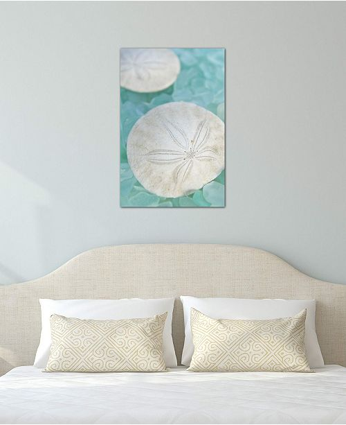 "iCanvas ""Seaglass 3"" by Alan Blaustein Gallery-Wrapped Canvas Print (40 x 26 x 0.75)"