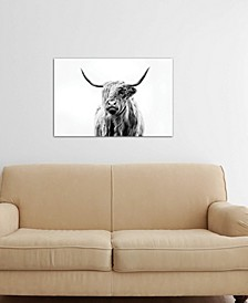 """Portrait Of A Highland Cow"" by Dorit Fuhg Gallery-Wrapped Canvas Print (26 x 40 x 0.75)"