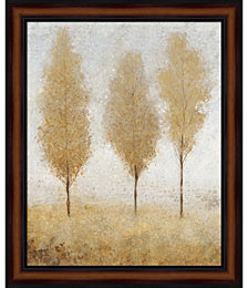 Autumn Springs I by Timothy O'Toole Framed Art
