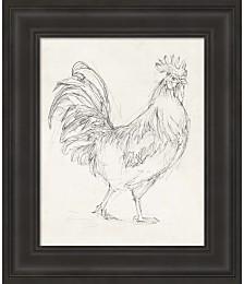 Rooster Sketch I by Ethan Harper Framed Art