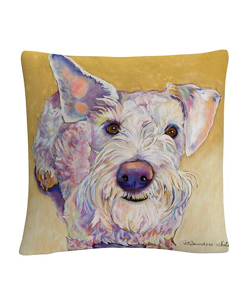 "Baldwin Scooter Animals Pets Painting Bold 16x16"" Decorative Throw Pillow by Pat Saunders-White"
