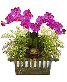 Nearly Natural Orchid, Succulent & Maidenhair Fern Artificial Arrangement