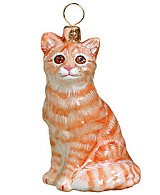 Joy To The World American Shorthair Orange