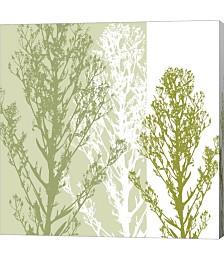 Gossamer Greens by Erin Clark Canvas Art