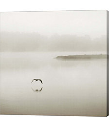 Silence by Nicholas Bell Photography Canvas Art