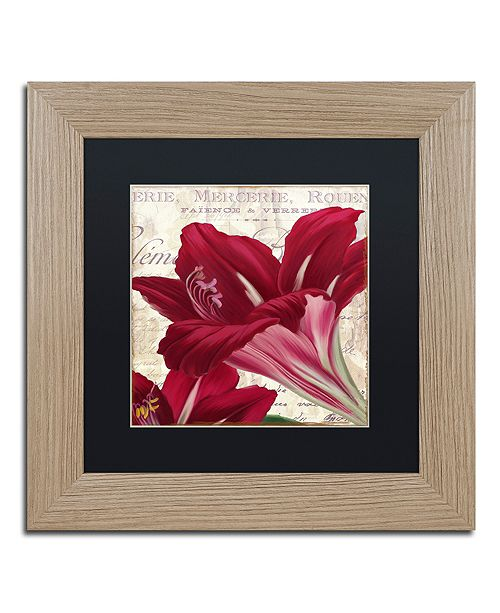 "Trademark Global Color Bakery 'Amaryllis ' Matted Framed Art, 11"" x 11"""