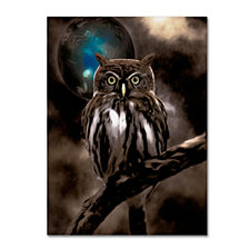 Color Bakery 'Night Owl' Canvas Art