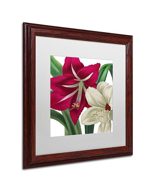 "Trademark Global Color Bakery 'Christmas Amaryllis I' Matted Framed Art, 16"" x 16"""