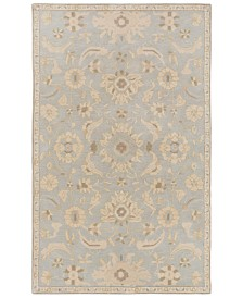 Surya Caesar CAE-1162 Light Gray 12' x 15' Area Rug