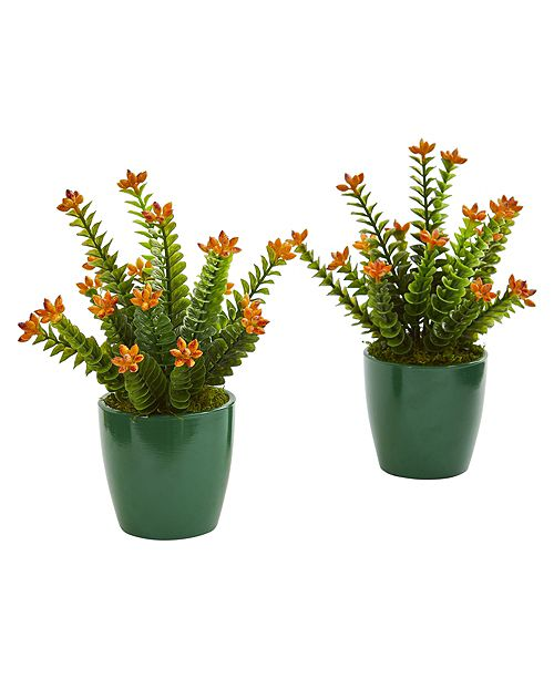 Nearly Natural Sedum Succulent Artificial Plant in Green Planter, Set of 2