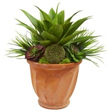 Nearly Natural Succulent Garden Artificial Plant in Terra Cotta Planter