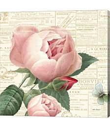 Roses in Paris by Katie Pertiet