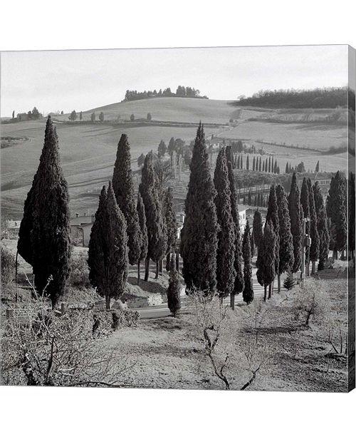 Metaverse Tuscany IV by Alan Blaustein