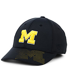 Top of the World Michigan Wolverines Pitted Flex Cap