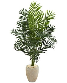 5.5' Paradise Palm Artificial Tree in Sand-Colored Planter