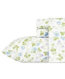 Laura Ashley Core Spring Bloom Multi Blue King Flannel Sheet Set