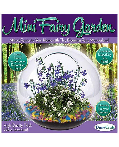 Dunecraft Glass Terrarium Mini Fairy Garden Reviews Kids