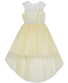 Rare Editions Toddler Girls Embroidered High-Low Dress
