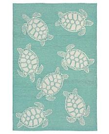 Liore Manne' Capri 1634 Turtle Indoor/Outdoor Area Rug
