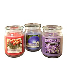 Lumabase Set of 3, 18oz Floral Scented Candles in Apothecary Jars