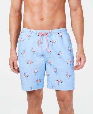 swim shorts flamingo