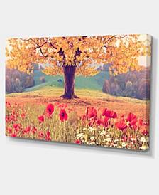 "Designart Landscape With Poppy Flowers Photography Canvas Art Print - 32"" X 16"""