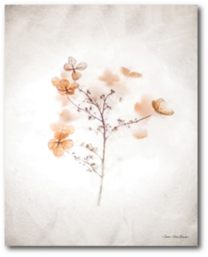 Courtside Market Dried Flowers Gallery-Wrapped Canvas Wall Art - 18