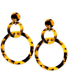 Zenzii Linked Circle Resin Drop Earrings