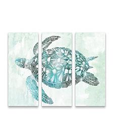 Sea Turtle S3