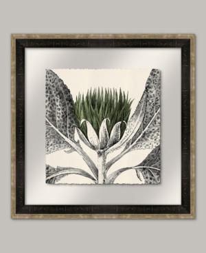 Arctium I in Kale Framed Giclee Wall Art - 22