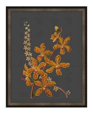 Beautiful Botanical on Black V Framed Giclee Wall Art - 17
