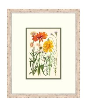 Cottage Flowers Iv Framed Giclee Wall Art - 21