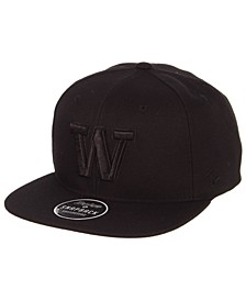 Washington Huskies Z11 Black on Black Snapback Cap