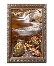 "Michael Blanchette Photography Autumn Swirly Ornate Framed Art - 1"" x 16"" x 20"""