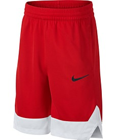 Nike Big Boys Colorblocked Shorts