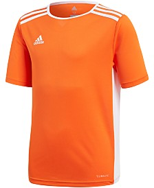 adidas Originals Big Boys Entrada 18 Jersey