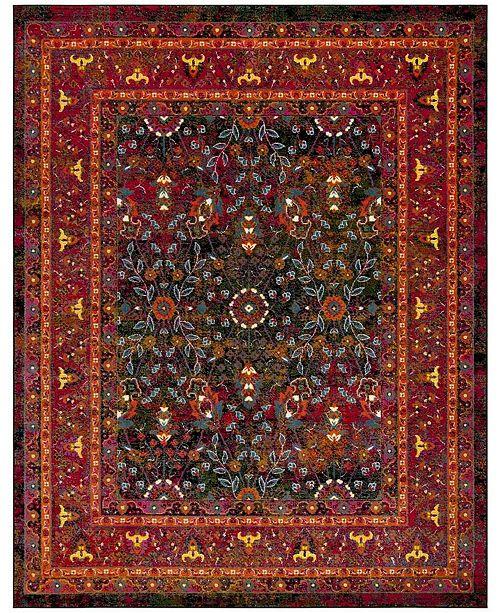 Safavieh Cherokee Red and Black 8' x 10' Area Rug