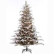 International 7.5 ft. Pre-lit Arctic Fir Flocked Artificial Christmas Tree 700 UL listed Clear Lights